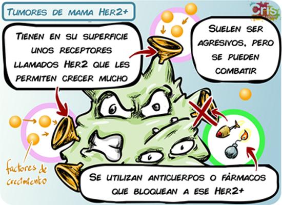 CRIS cancer de ovario. Tumores de mama HER2++