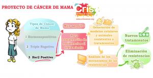 Tumores de Mama Her2+