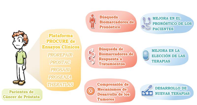 Investigación cáncer de próstata