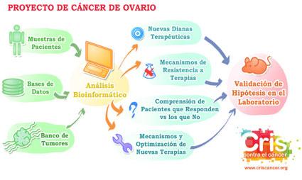 Proyecto CRIS cancer de Ovario