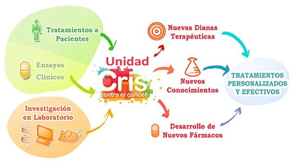 Unidad CRIS. Investigación Translacional en Hematología.