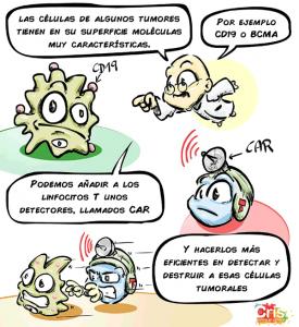 Unidad HUNET-CRIS terapias CAR