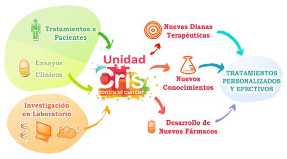 grafico_cris