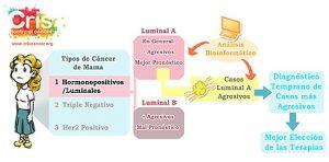 Hacia diagnósticos más precisos de los casos más agresivos del tipo de cáncer de mama