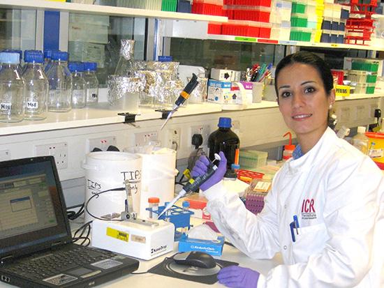 La Doctora Elena Castro Premio al Investigador Joven por la Prostate Cancer Foundation (PCF)