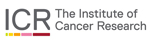 ICR The Institute Of Cancer Research
